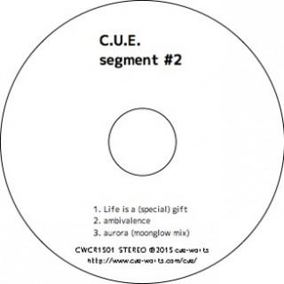 segment-#2_face