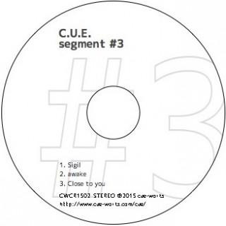 segment #3_face